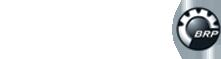 Logo Evinrude
